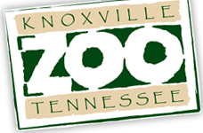 Zooknoxville Coupons